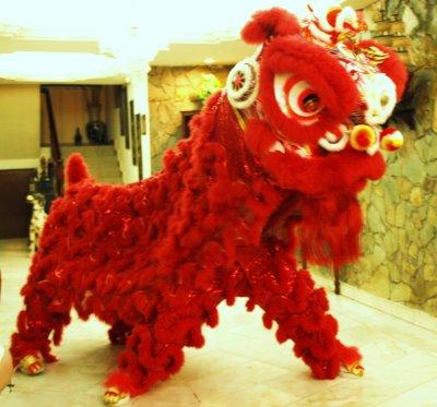 Lion Dance Recital Costume